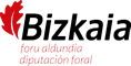 diputacion-bizkaia-logo